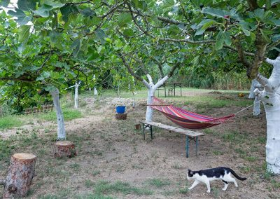 Masseria Sardo, Agribar, agriturismo