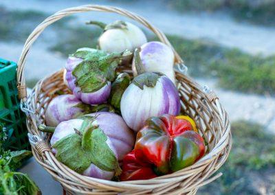 Masseria Sardo, ortaggi